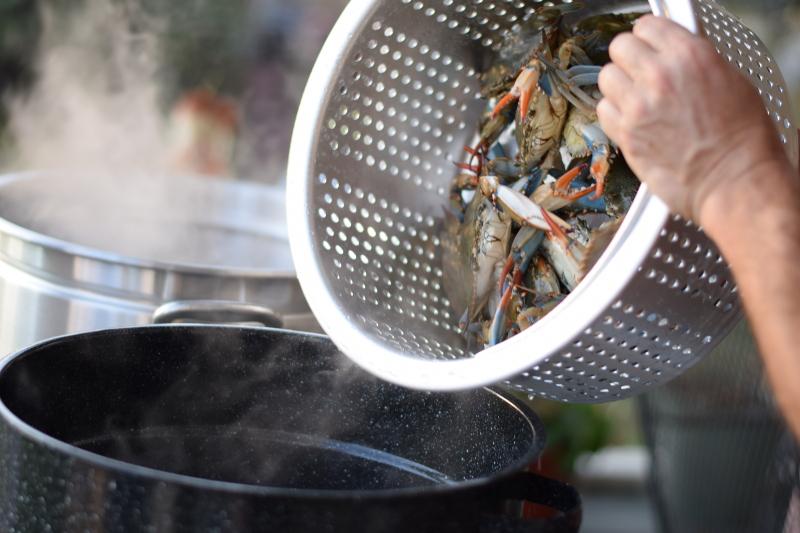 blue crabs crab boil