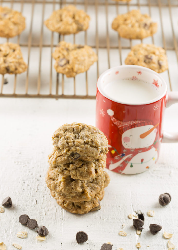 spiced oatmeal chocolate chip cookie recipe in a Christmas goodie bag